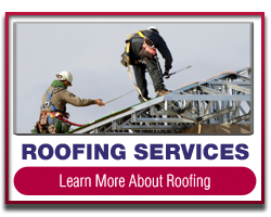 Bronx Roofing Services