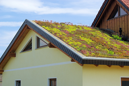 Green Roofing image